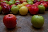 Apples by Mike Ryan via Flickr